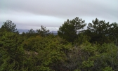 Punat,poljoprivredno zemljište površine 2337m2-pogled na more