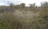 Otok Krk,poljoprivredno zemljište površine 2780m2