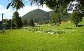 Zemljište u Lokvama