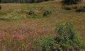 Sleme poljoprivredno zemljište