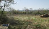 Krk - Brzac, Poljoprivredno zemljište