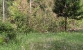 Delnice- poljoprivredni teren