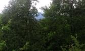 Ravna Gora-poljoprivredni teren