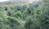 Земельный участок строительного назначения Buzdohanj, Čavle, 1.922,40m2