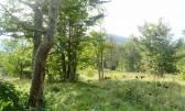 Bauland Stari Laz, Ravna Gora, 3.309m2