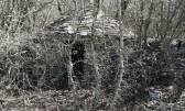 Istra,Kanfanar-Okreti,velika poljoprivredna pacela-šuma