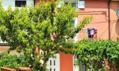 Istra,Savudrija,prekrasno renovirana Istarska kuća