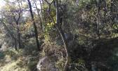 Non-structural plot Mošćenička Draga, 6.670m2