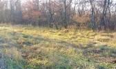 Terreno non edificabile Lovrečica, Umag, 2.429m2