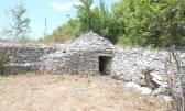 Istra, okolica Vodnjana, poljoprivredna parcela u prirodi, 4550 m2