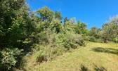 Istra,Lovrečica-Poljoprivredno zemljište 1,5 km od mora