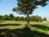 Istra, Marići, građevinsko zemljište za gradnju kuće u mirnome naselju