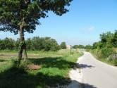 Istra, Marići, veliko građevinsko zemljište na rubu mjesta
