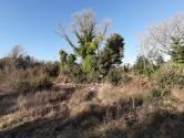 Šišan, 438m2,poljoprivredno -vikend zemljište