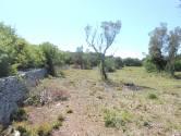 Istra, okolica Vodnjana i Peroja, zemljište u prirodi