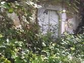 Križišće, teren s ruševinom i kućnim brojem