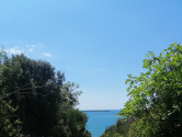 Rovinj,poljoprivredna parcela 2540m2,230m od plaže