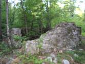 Okolica Opatije - Park prirode Lisina - Šuma sa starinom
