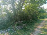 Sveti Lovreč, okolica - Poljoprivredno zemljište 14749 m2 s pristupnim putem
