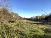 Istra, Kastelir- Poljoprivredno zemljiste sa pristupnim putom